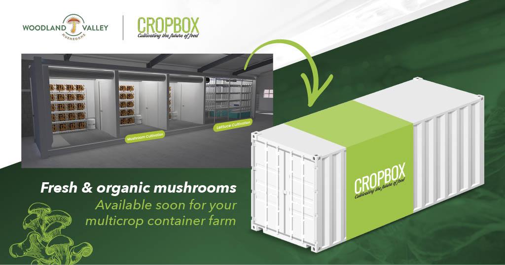 Mushroom Cropbox